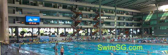 SwimSG.com - Swimming lessons Competitive Swimmer Singapore